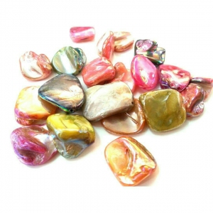 Natural Sea Shells, Dyed Nugget Beads, Mixed color