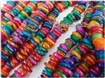 Natural Sea Shell Beads, Irregular Disk shape
